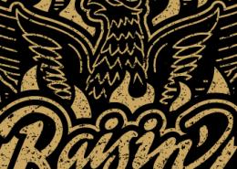 phoenix-feature